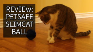REVIEW: PetSafe Slimcat Interactive Toy and Food Dispenser