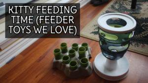 Kitty Feeding Time (Feeder Toys We Love)