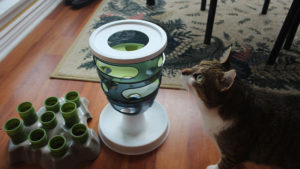 My Cat Eats Too Fast, Then Throws Up! 6 Easy Ways to Kitty to Slow down While Eating!