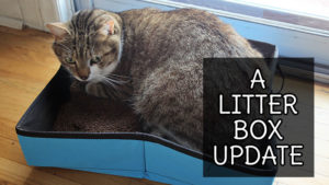 A Litter Box Update