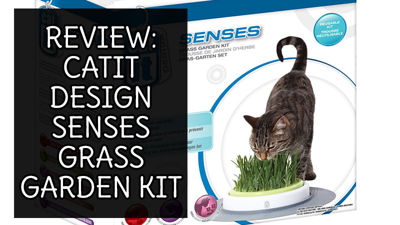 Review Catit Design Senses Grass Garden Kit