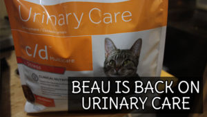 Beau Is Back On Urinary Care