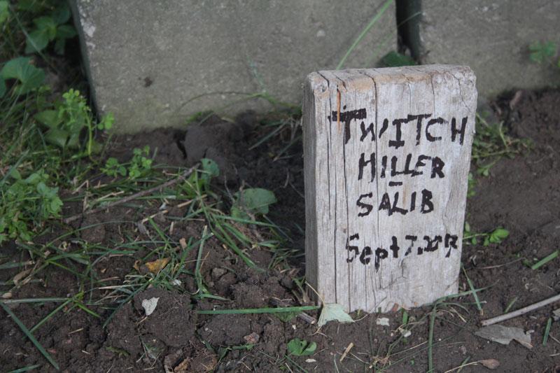 twitch-grave