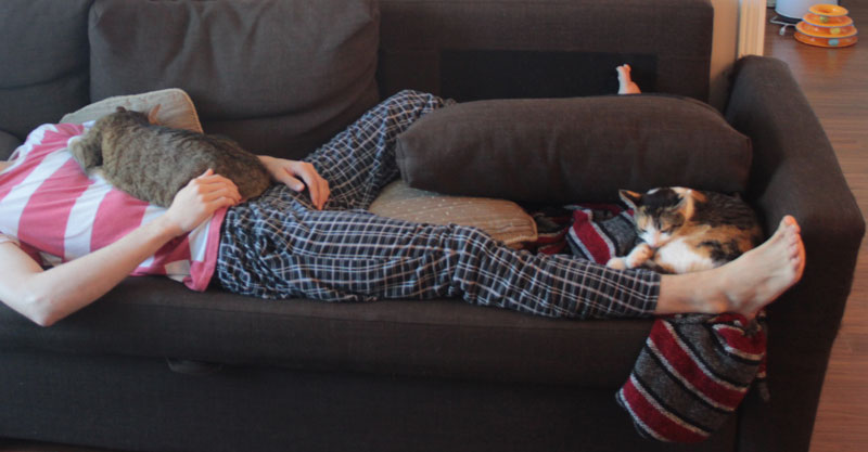 beau-and-kalista-sleeping