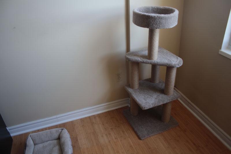 amazon-cat-tree-1