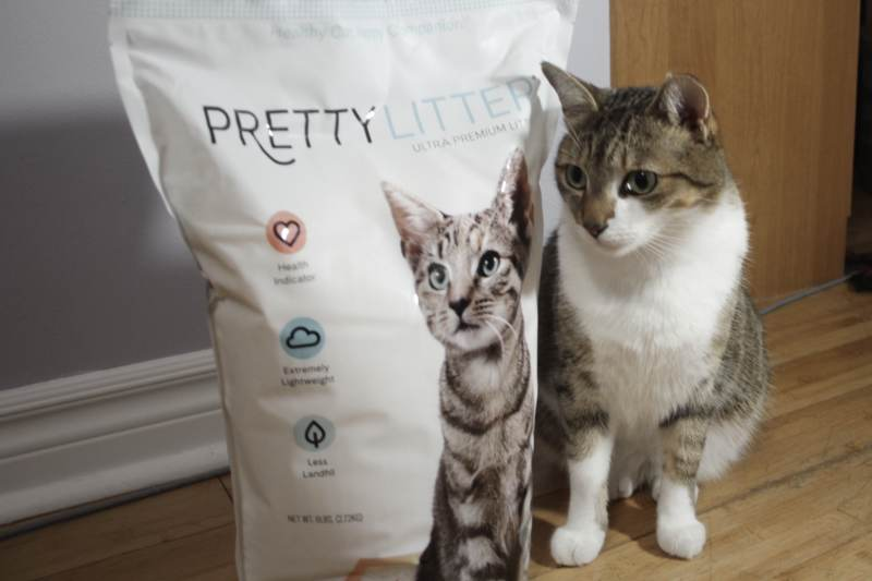 beau-with-pretty-litter-bag